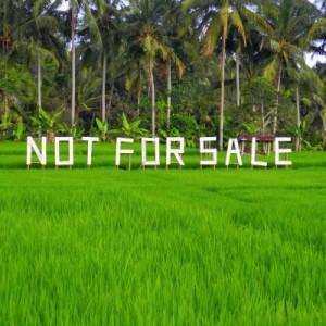 Не продается!